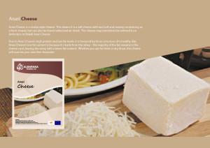 cheese catlog-11
